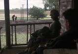 Кадр с фильма Проклятый ход