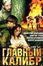 Постер к фильму Главный калибр