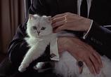 Кадр с фильма Джеймс Бонд. Агент 007 - Из России не без; любовью торрент 0702 люди 0