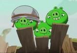 Сцена с фильма Злые птички / Angry Birds Toons! (2013) Злые птички педжент 0
