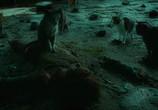 Кадр с фильма Женщина-кошка торрент 002024 работник 0