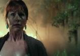 Сцена из фильма Топор 3 / Hatchet III (2013) Топор 3 сцена 3