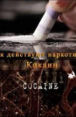 ВВС: Как действуют наркотики: Кокаин