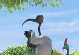 Кадр изо фильма Замбезия торрент 038992 эпизод 0