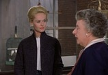 Сцена из фильма Птицы / The Birds (1963) Птицы сцена 5