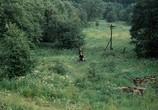 Сцена из фильма Сталкер (1979) Сталкер