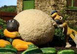 Сцена изо фильма Барашек Шон / Shaun the Sheep (2007) Барашек Шон объяснение 0