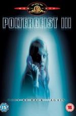 Полтергейст 0 / Poltergeist III (1988)