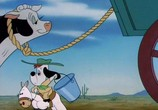 Сцена из фильма Друпи - коллекция / Tex Avery's Droopy: Collection (1946) Друпи - коллекция сцена 4