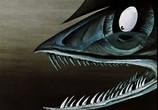 Кадр изо фильма Возвращение блудного попугая. Выпуски 0-3 + Сборник мультфильмов торрент 07588 сцена 0