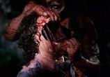 Сцена из фильма Топор / Hatchet (2006) Топор сцена 4