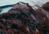 Кадр изо фильма Схватка торрент 07813 сцена 0