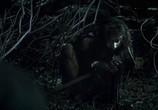 Кадр изо фильма Грибы