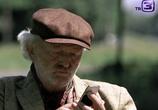 Кадр изо фильма Тайна ковчега