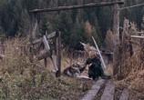 Кадр с фильма Сибирь. Монамур торрент 00144 план 0