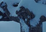 Кадр с фильма Омерзительная восьмерка