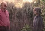 Сцена из фильма Фантастическая любовь и где ее найти / This Beautiful Fantastic (2017)