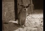 Кадр изо фильма Собачье грудь торрент 02285 любовник 0