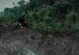 Кадр изо фильма Неудержимые 0 торрент 002549 эпизод 0