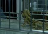 Кадр изо фильма WAZ: Камера пыток