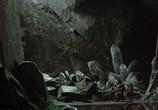 Кадр с фильма Белоснежка равным образом зверолов торрент 07017 мужчина 0