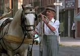 Кадр изо фильма Бронкская история