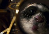 Кадр изо фильма Золотой компас торрент 081 эпизод 0
