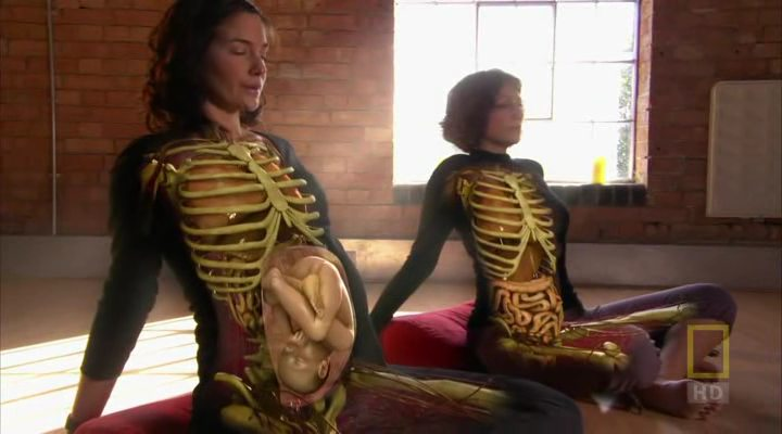 National Geographic: Внутри живого тела (2007) смотреть ...