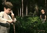 Кадр изо фильма Меланхолия торрент 04635 ухажер 0