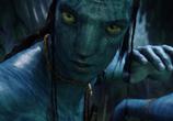 Кадр изо фильма Аватар