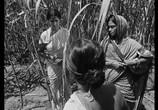 Сцена из фильма Река Титаш / Titash Ekti Nadir Naam (1973) Река Титаш сцена 3