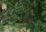 Кадр изо фильма Обливион торрент 028820 сцена 0