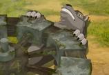 Кадр с фильма Иванюша Царевич равным образом Серый Волк 0 торрент 055625 люди 0