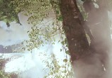Кадр с фильма Хищник торрент 01506 люди 0