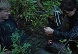 Кадр изо фильма Голодные игры