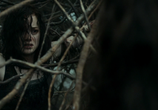 Кадр с фильма Зловещие мертвецы: Черная сочинение