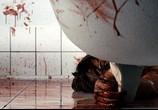 Сцена изо фильма Мученицы / Martyrs (2008) Мученицы