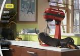 Кадр изо фильма Тайная век домашних животных торрент 032457 сцена 0