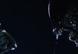 Сцена изо фильма Чужой напротив Хищника: Дилогия / AVP: Alien vs. Predator: Dilogy (2004)