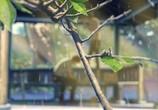 Кадр с фильма Сад изящных слов торрент 023530 любовник 0