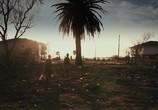 Кадр изо фильма Монстры торрент 093706 мужчина 0