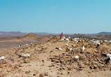 Кадр изо фильма Цветок пустыни