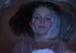 Кадр изо фильма Девственницы-самоубийцы