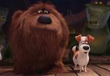 Кадр изо фильма Тайная долгоденствие домашних животных торрент 031716 эпизод 0