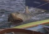 Сцена изо фильма Челюсти 0 / Jaws 0 (1978) Челюсти 0 сценическая площадка 0
