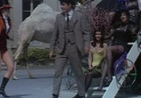 Сцена из фильма Червовый король / Le roi de coeur (1966) Червовый король сцена 3