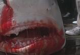 Сцена изо фильма Челюсти / Jaws (1975) Челюсти театр 0