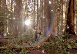 Кадр с фильма Тайный круг торрент 03774 эпизод 0