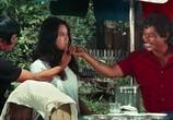 Кадр с фильма Большой крутиков торрент 026033 любовник 0
