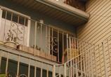 Кадр с фильма Жасмин торрент 044685 эпизод 0